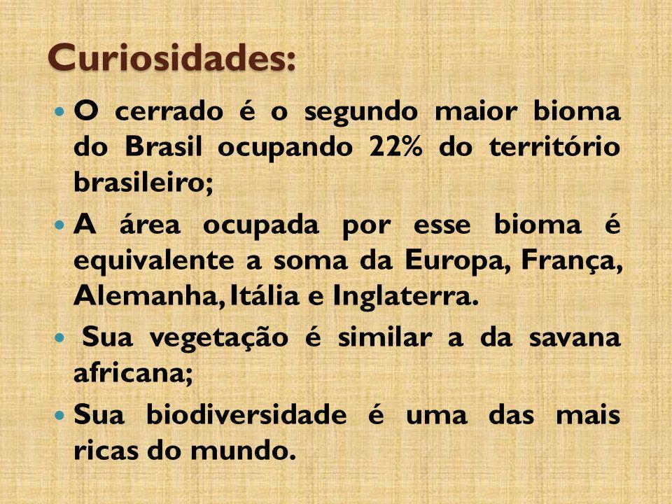 Curiosidades: O cerrado é o segundo maior bioma do Brasil ocupando 22% do território brasileiro;
