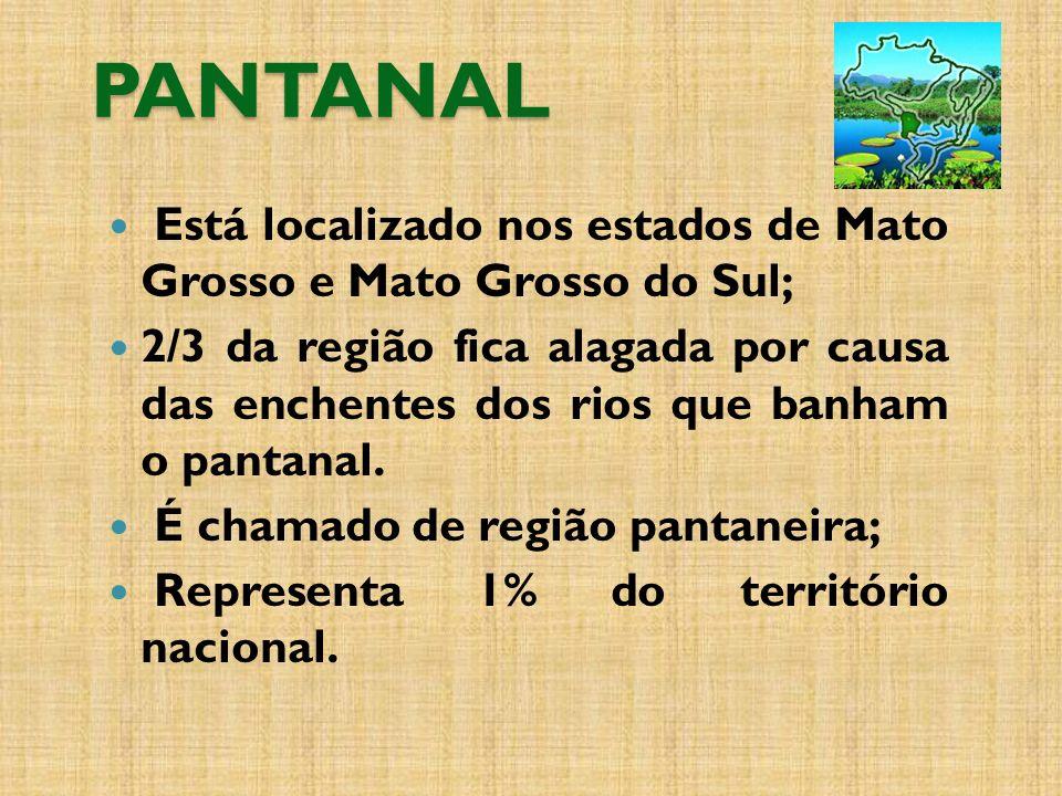 PANTANAL Está localizado nos estados de Mato Grosso e Mato Grosso do Sul;