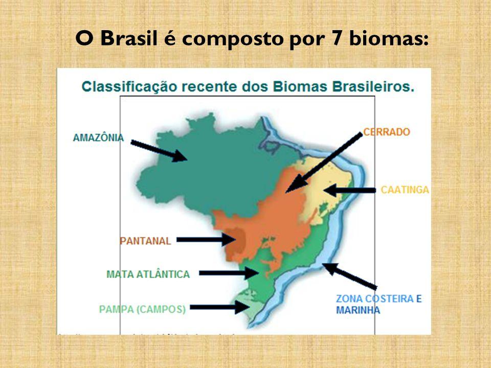 O Brasil é composto por 7 biomas: