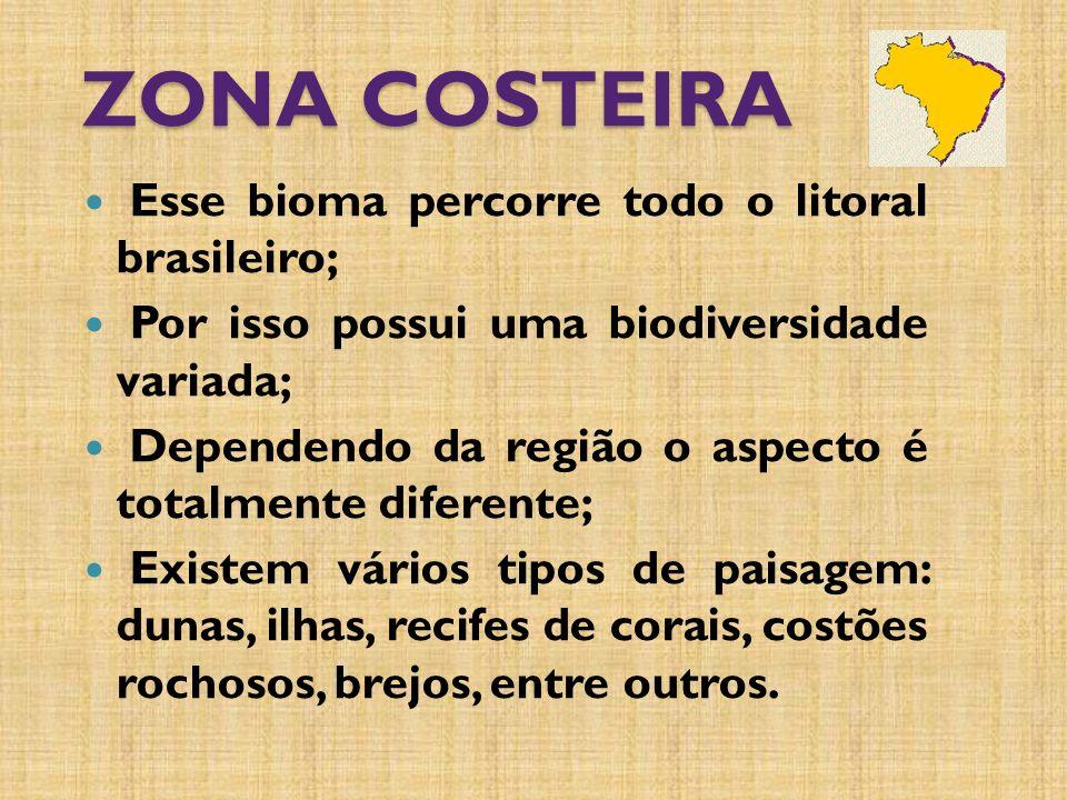 ZONA COSTEIRA Esse bioma percorre todo o litoral brasileiro;