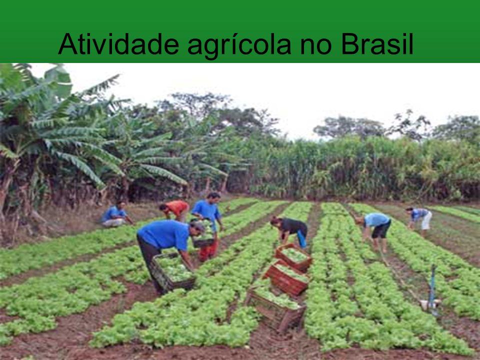 Atividade agrícola no Brasil