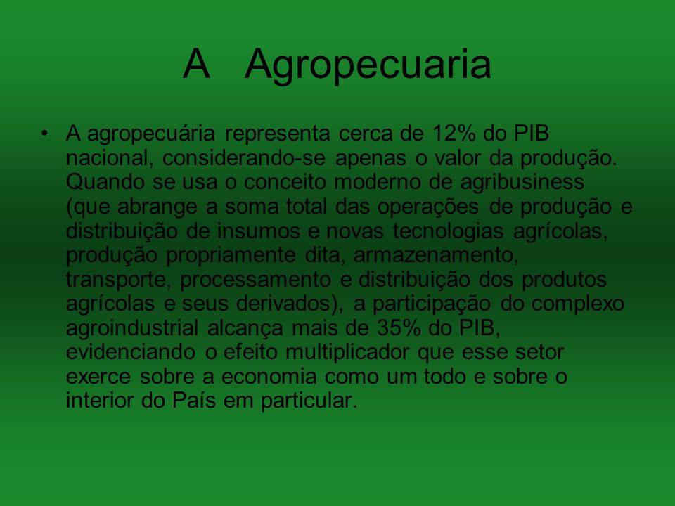 A Agropecuaria