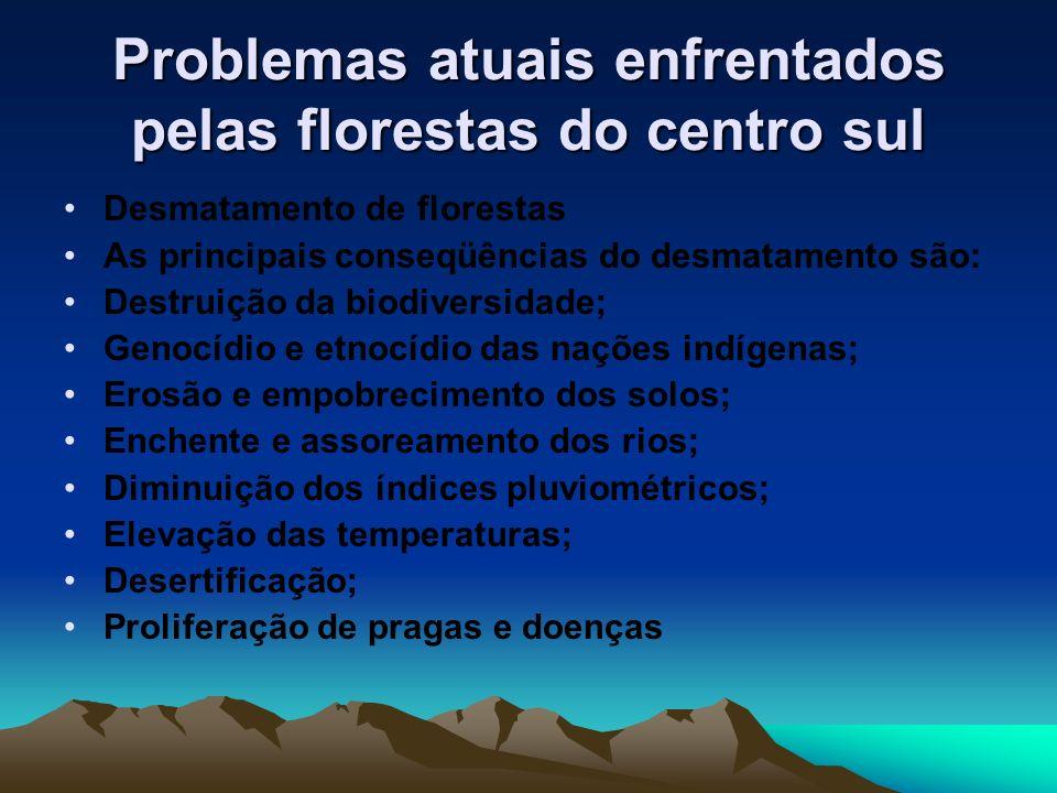 Problemas atuais enfrentados pelas florestas do centro sul