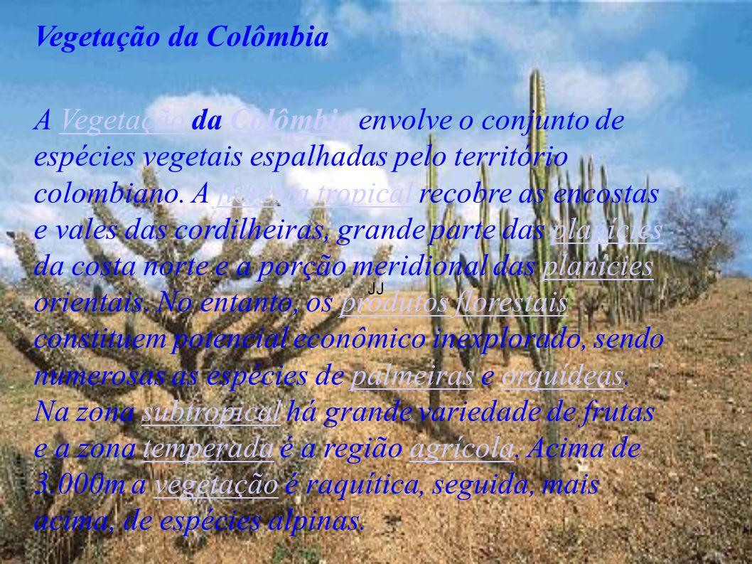 JJ Vegetação da Colômbia.