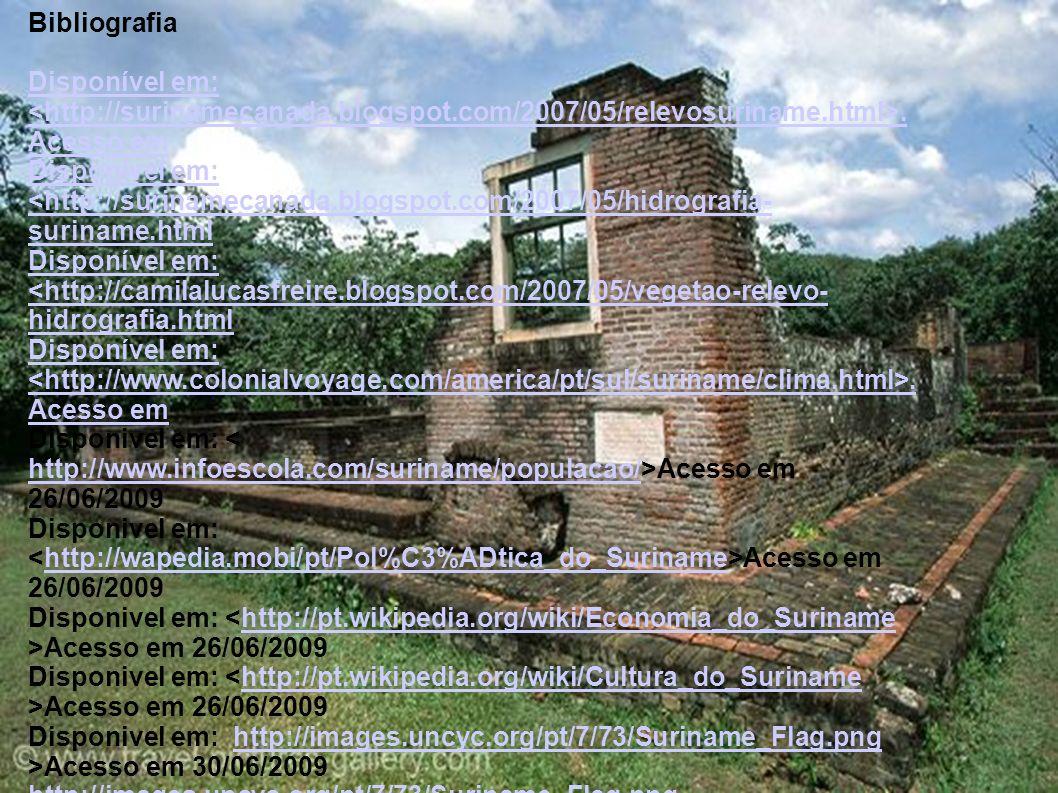 Bibliografia Disponível em: <http://surinamecanada.blogspot.com/2007/05/relevosuriname.html>. Acesso em.