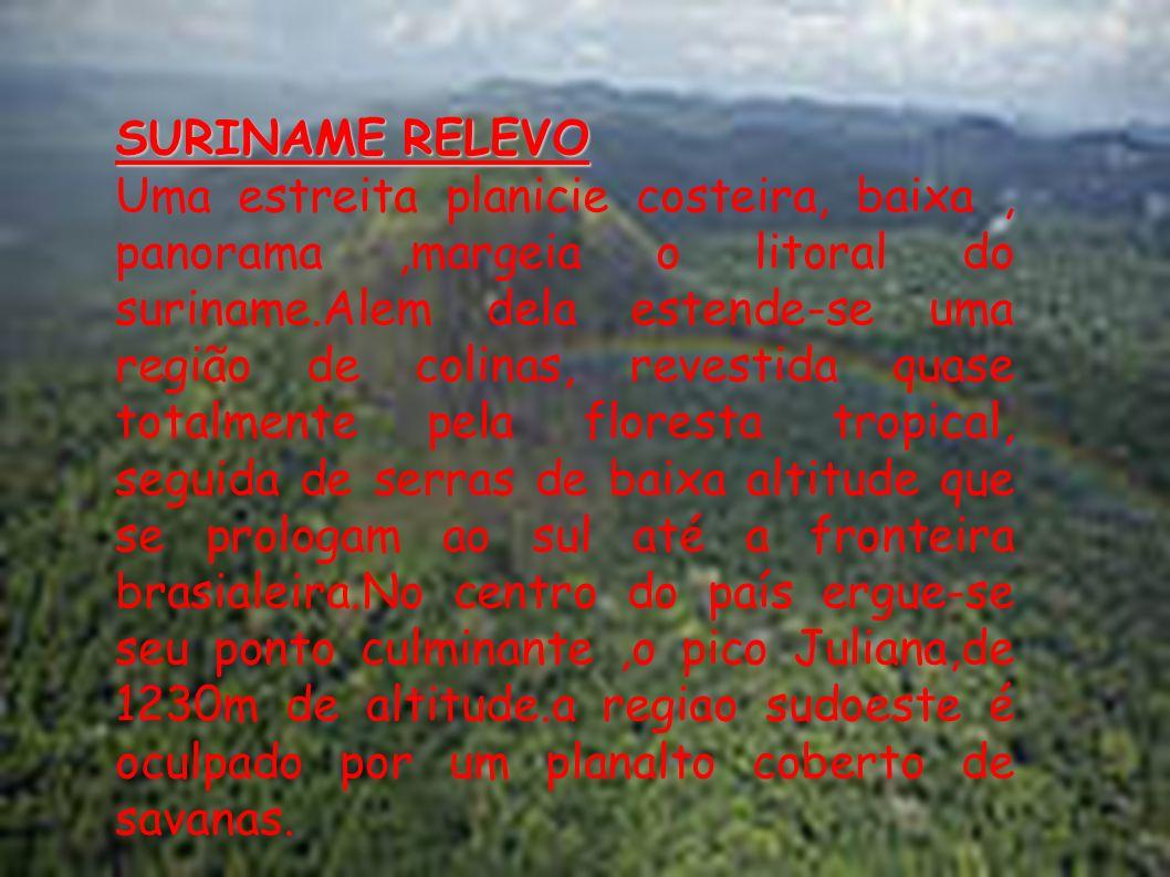 SURINAME RELEVO