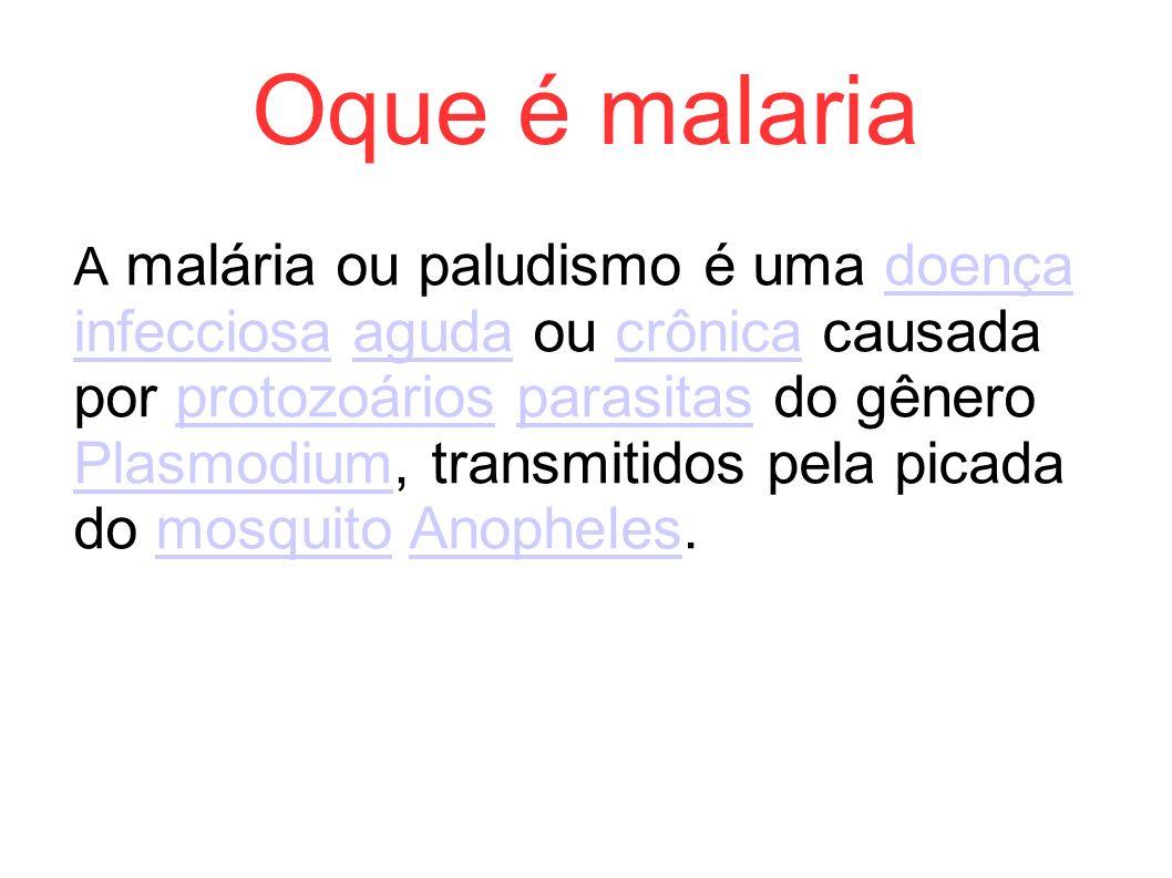 Oque é malaria