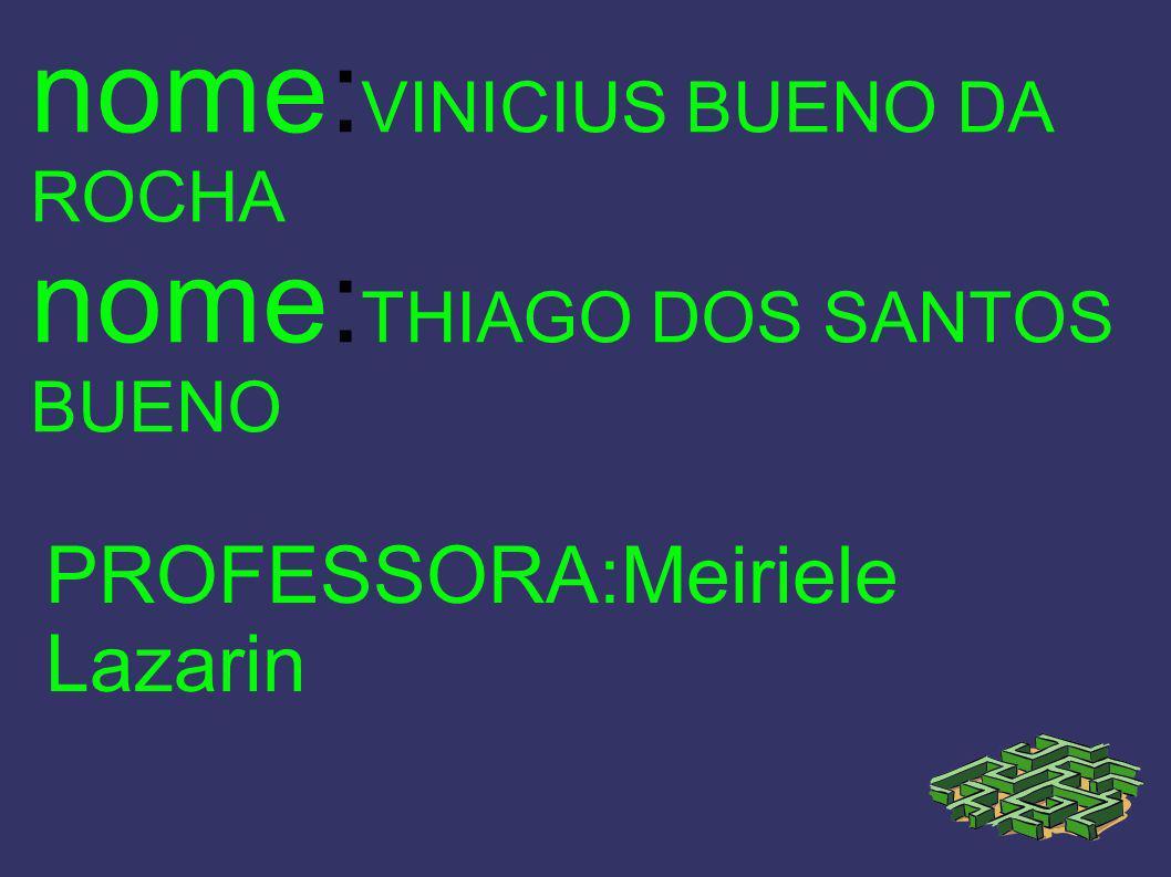 nome:VINICIUS BUENO DA ROCHA nome:THIAGO DOS SANTOS BUENO