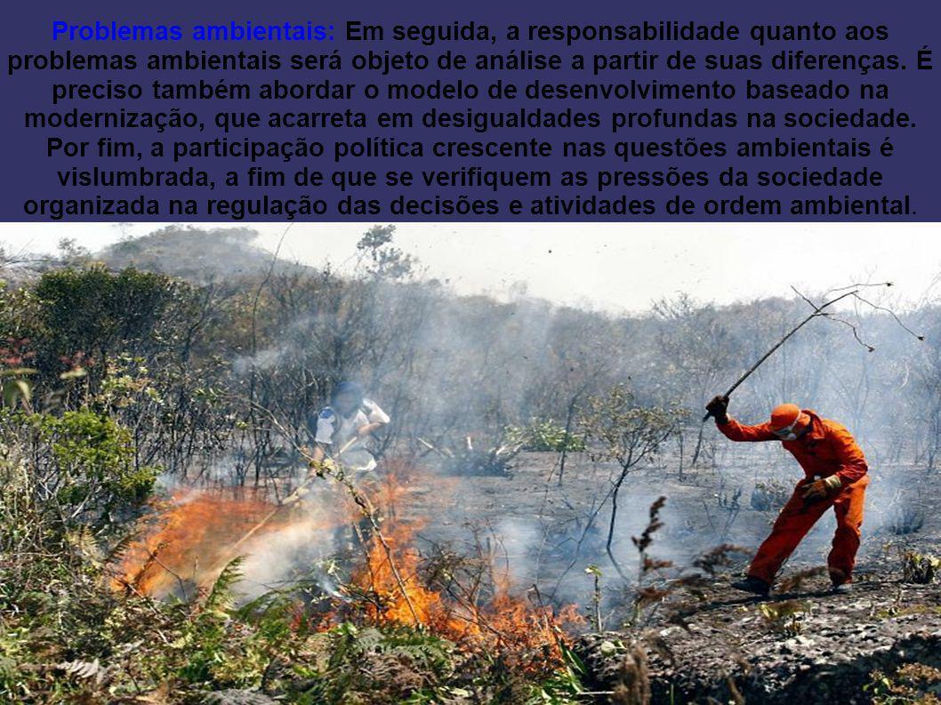 Problemas ambientais: Em seguida, a responsabilidade quanto aos problemas ambientais será objeto de análise a partir de suas diferenças.