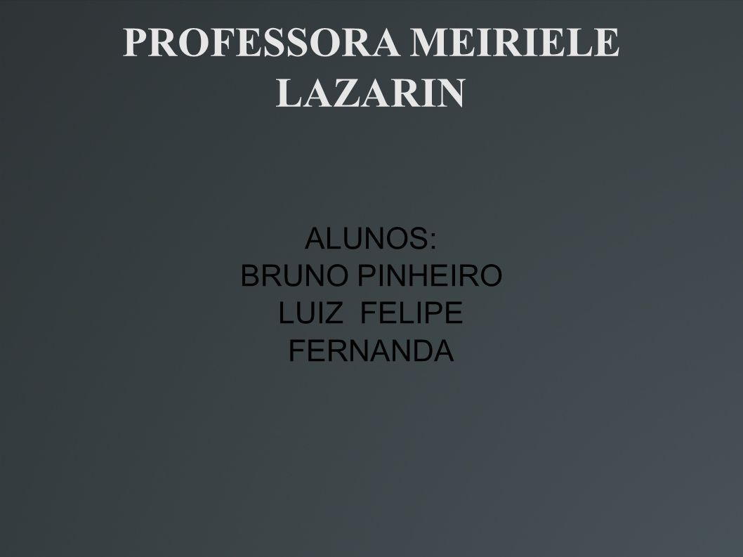 PROFESSORA MEIRIELE LAZARIN