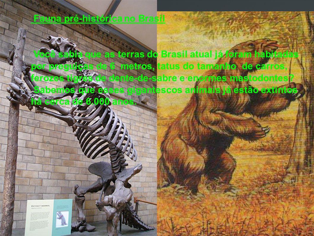 Fauna pré-histórica no Brasil