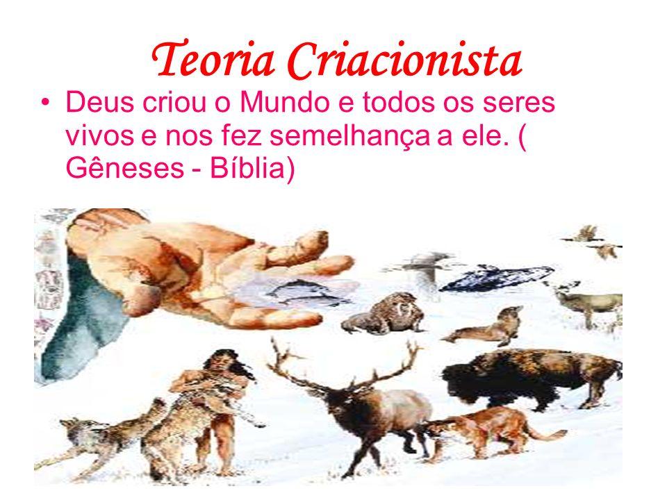 Teoria CriacionistaDeus criou o Mundo e todos os seres vivos e nos fez semelhança a ele.