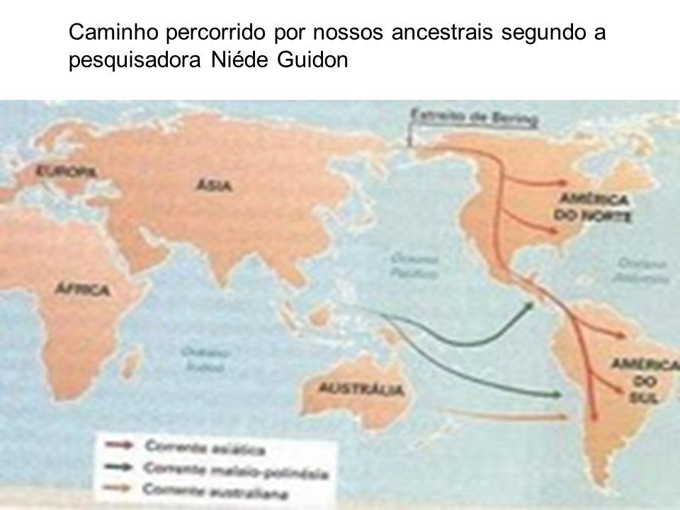 Caminho percorrido por nossos ancestrais segundo a pesquisadora Niéde Guidon