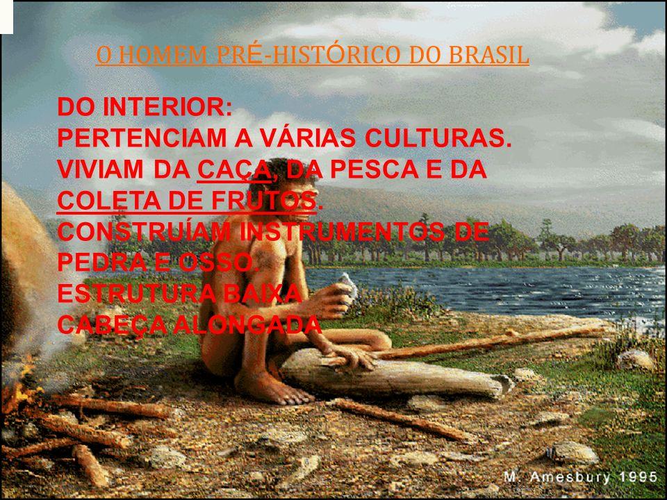 O HOMEM PRÉ-HISTÓRICO DO BRASIL