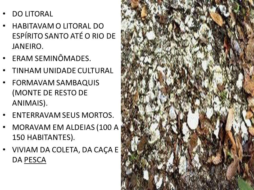 DO LITORAL HABITAVAM O LITORAL DO ESPÍRITO SANTO ATÉ O RIO DE JANEIRO. ERAM SEMINÔMADES. TINHAM UNIDADE CULTURAL.