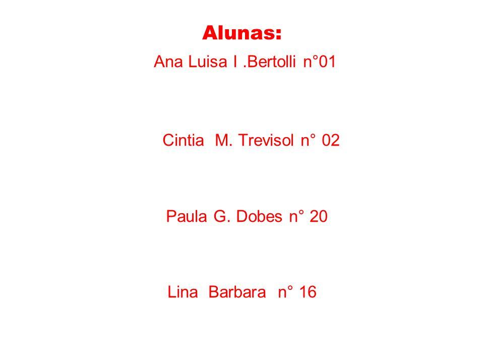 Alunas: Ana Luisa I .Bertolli n°01 Cintia M. Trevisol n° 02