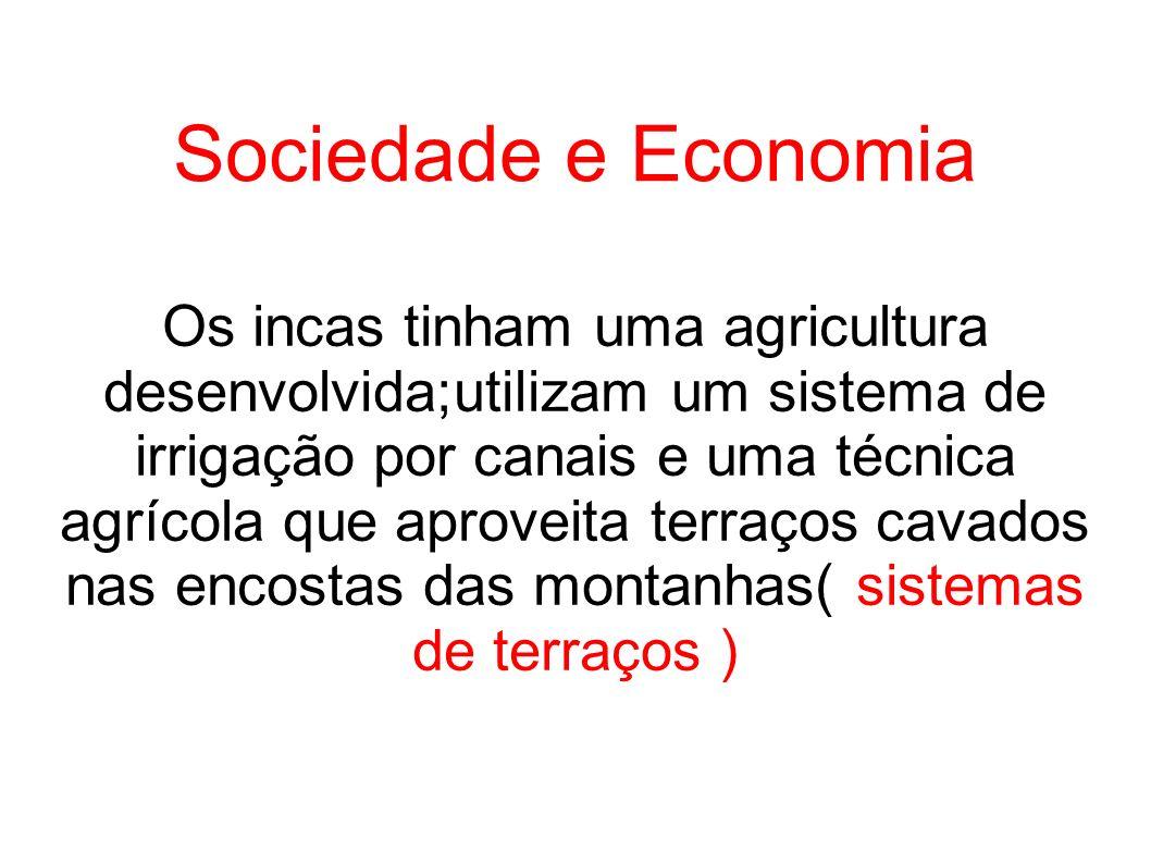 Sociedade e Economia