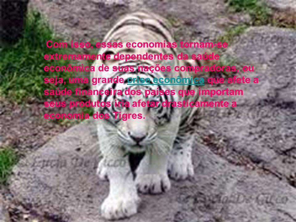 Com isso, essas economias tornam-se extremamente dependentes da saúde econômica de suas nações compradoras, ou seja, uma grande crise econômica que afete a saúde financeira dos países que importam seus produtos iria afetar drasticamente a economia dos Tigres.