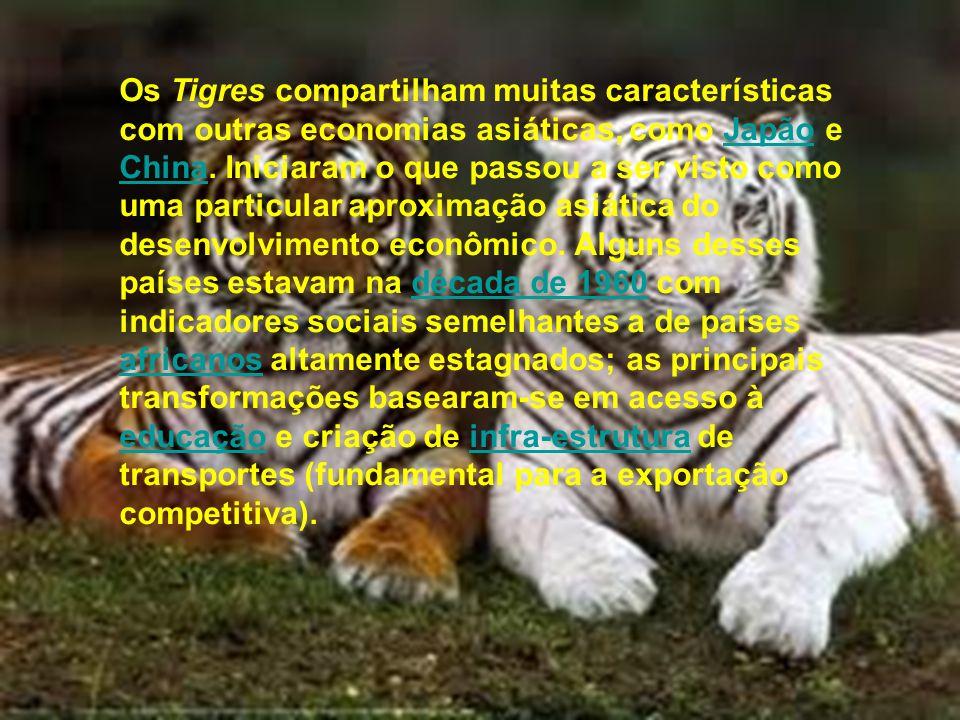 Os Tigres compartilham muitas características com outras economias asiáticas, como Japão e China.