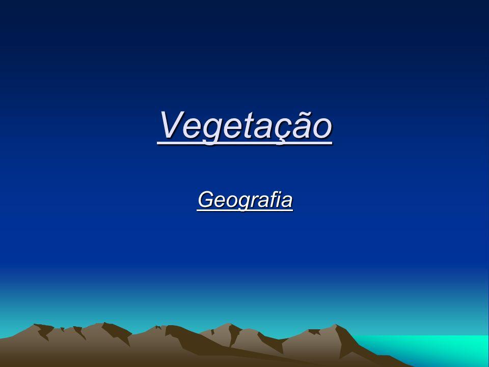 Vegetação Geografia