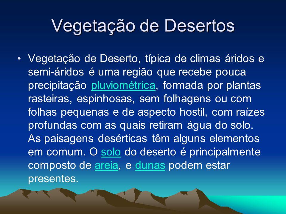 Vegetação de Desertos