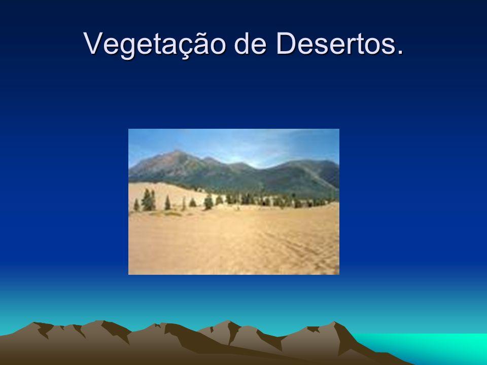 Vegetação de Desertos.