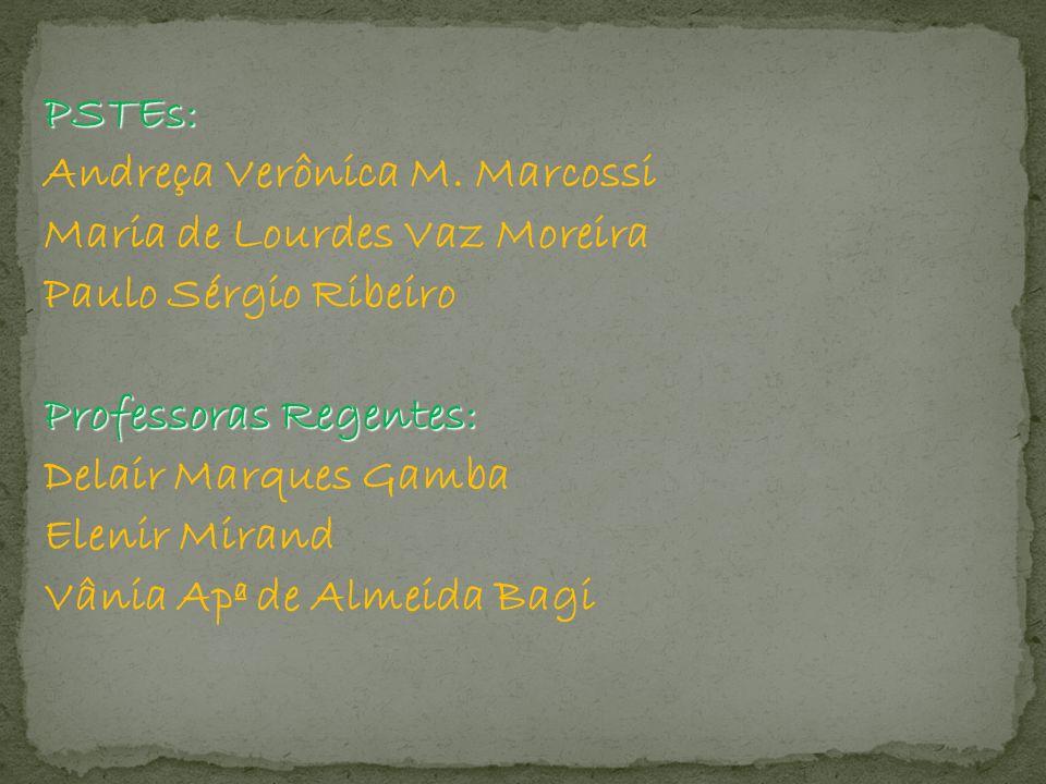 PSTEs: Andreça Verônica M. Marcossi. Maria de Lourdes Vaz Moreira. Paulo Sérgio Ribeiro. Professoras Regentes:
