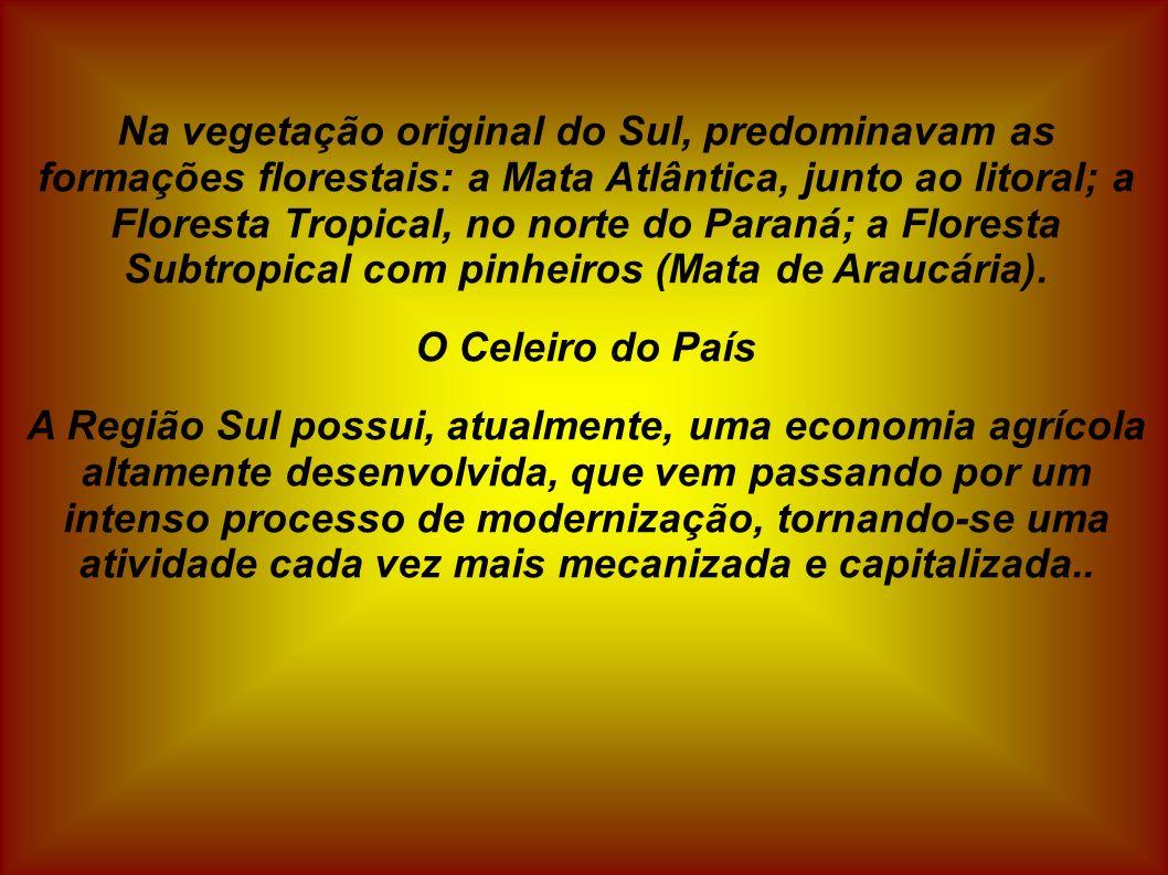 Na vegetação original do Sul, predominavam as formações florestais: a Mata Atlântica, junto ao litoral; a Floresta Tropical, no norte do Paraná; a Floresta Subtropical com pinheiros (Mata de Araucária).
