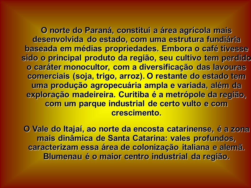 O norte do Paraná, constitui a área agrícola mais desenvolvida do estado, com uma estrutura fundiária baseada em médias propriedades. Embora o café tivesse sido o principal produto da região, seu cultivo tem perdido o caráter monocultor, com a diversificação das lavouras comerciais (soja, trigo, arroz). O restante do estado tem uma produção agropecuária ampla e variada, além da exploração madeireira. Curitiba é a metrópole da região, com um parque industrial de certo vulto e com crescimento.