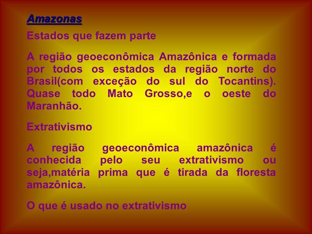 Amazonas Estados que fazem parte.