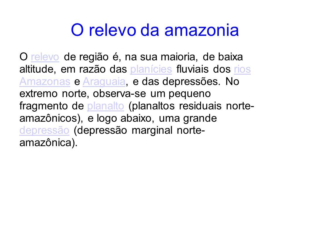 O relevo da amazonia