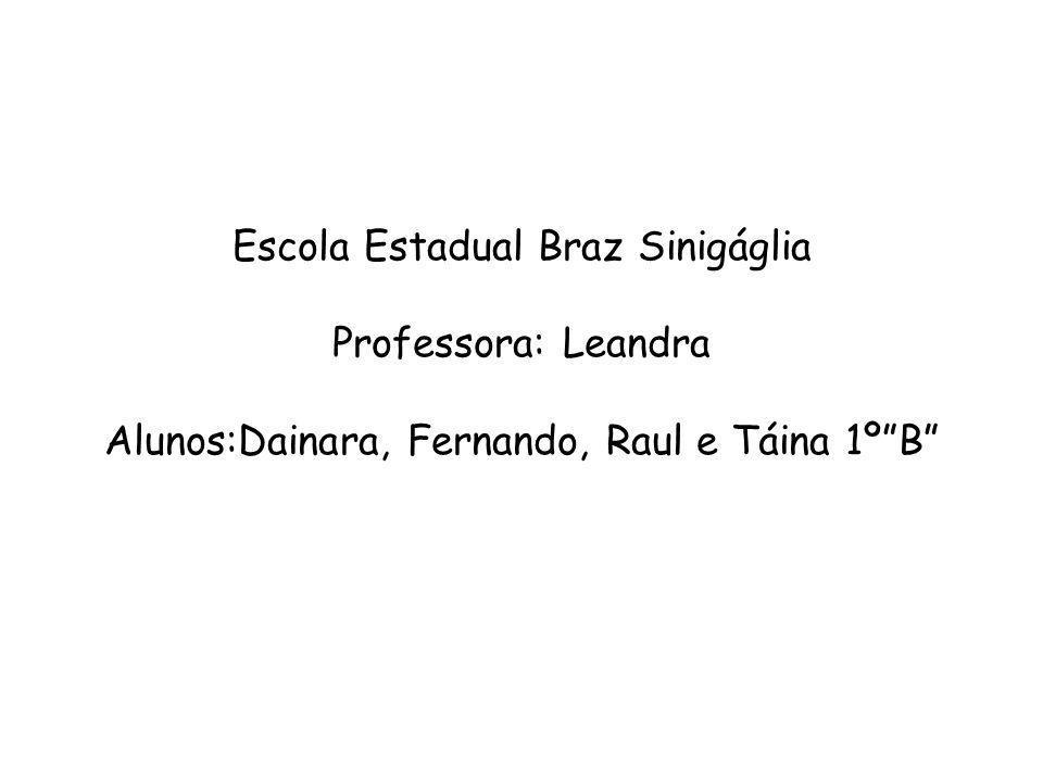 Escola Estadual Braz Sinigáglia Professora: Leandra Alunos:Dainara, Fernando, Raul e Táina 1º B