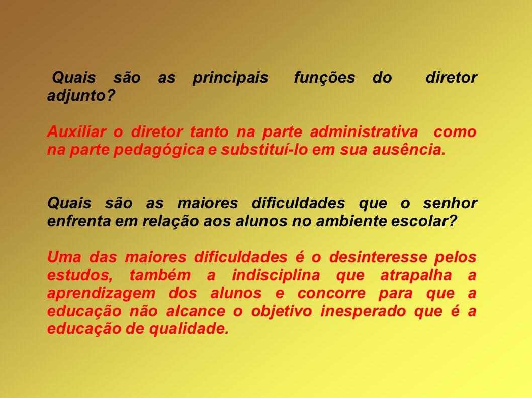 Quais são as principais funções do diretor adjunto