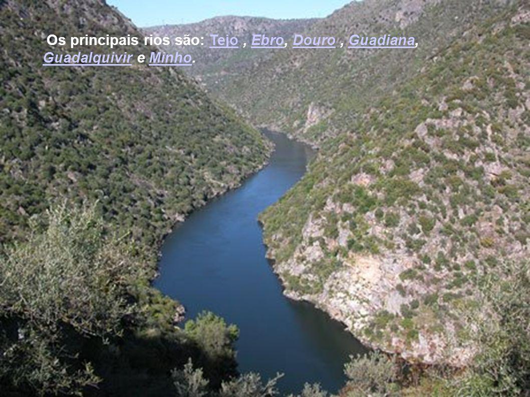 Os principais rios são: Tejo , Ebro, Douro , Guadiana, Guadalquivir e Minho.