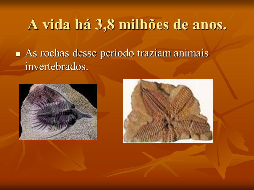 A vida há 3,8 milhões de anos.
