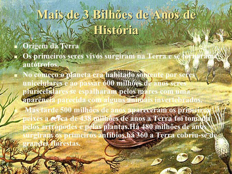 Mais de 3 Bilhões de Anos de História