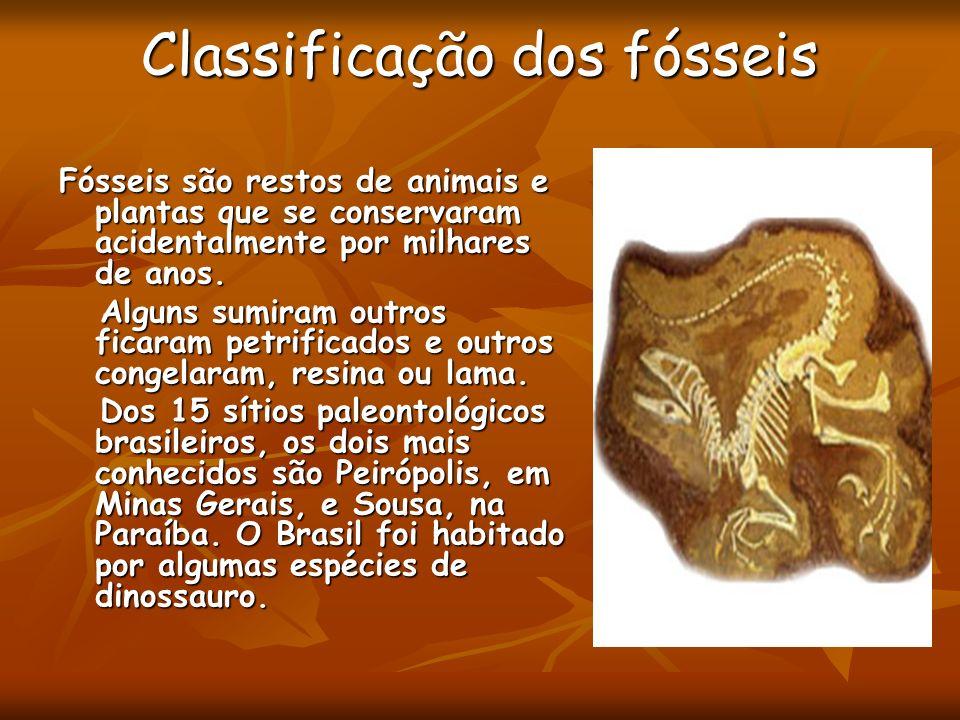 Classificação dos fósseis