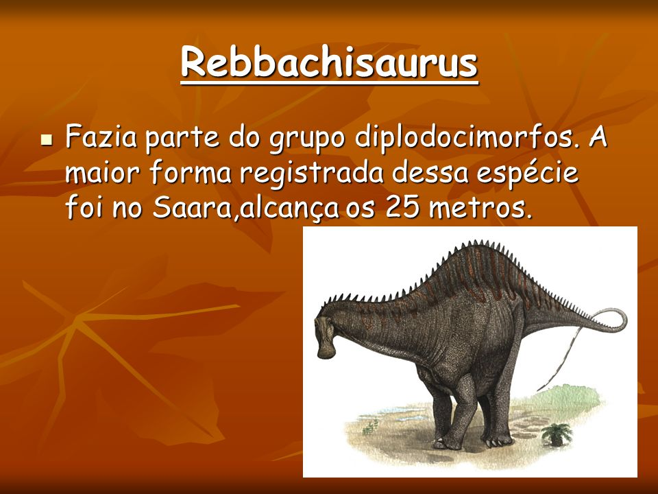 Rebbachisaurus Fazia parte do grupo diplodocimorfos.