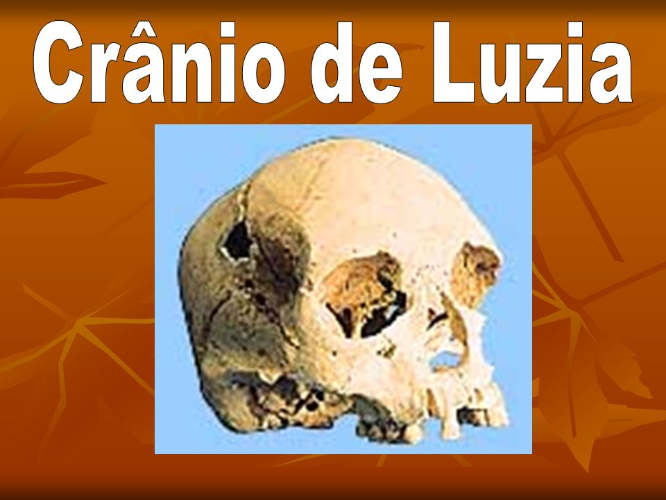 Crânio de Luzia