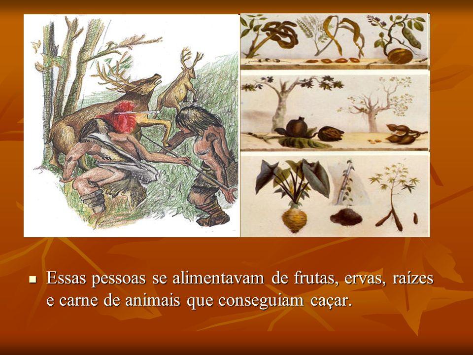 Essas pessoas se alimentavam de frutas, ervas, raízes e carne de animais que conseguiam caçar.