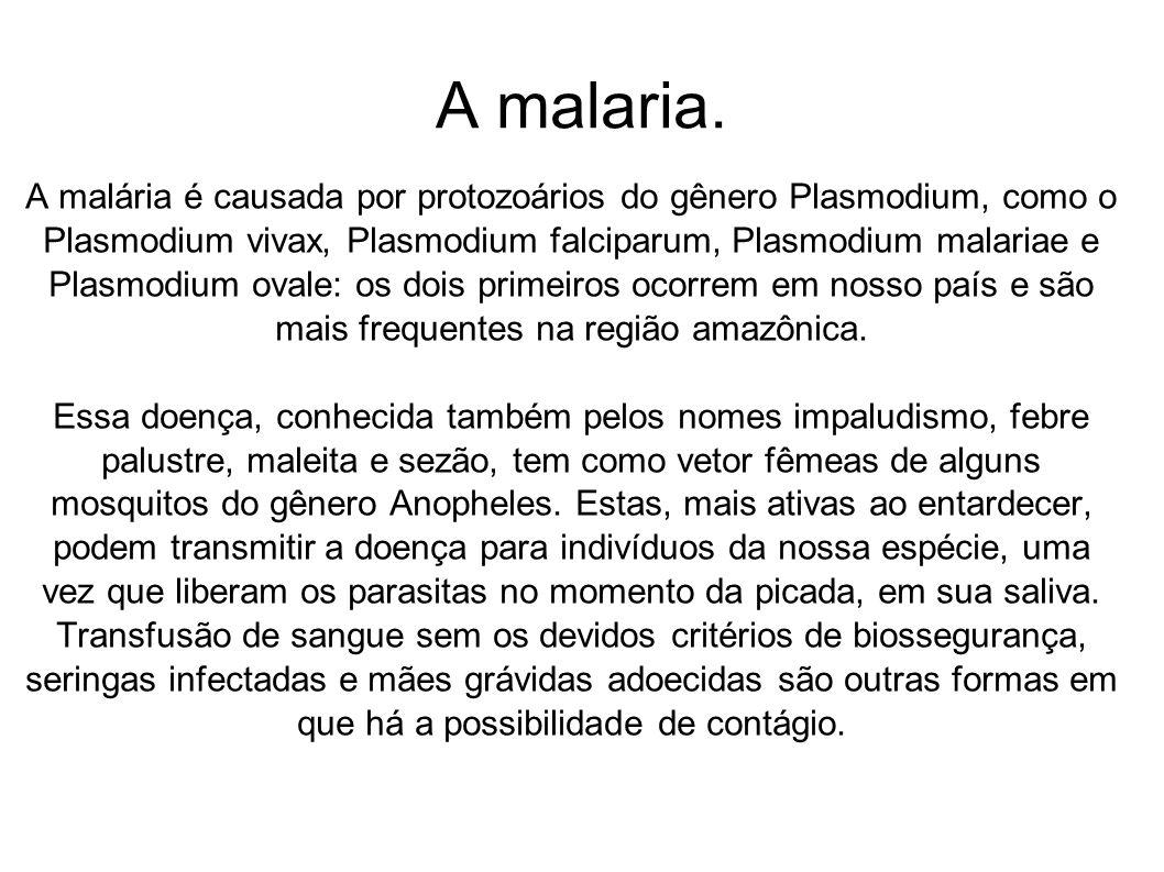 A malaria.