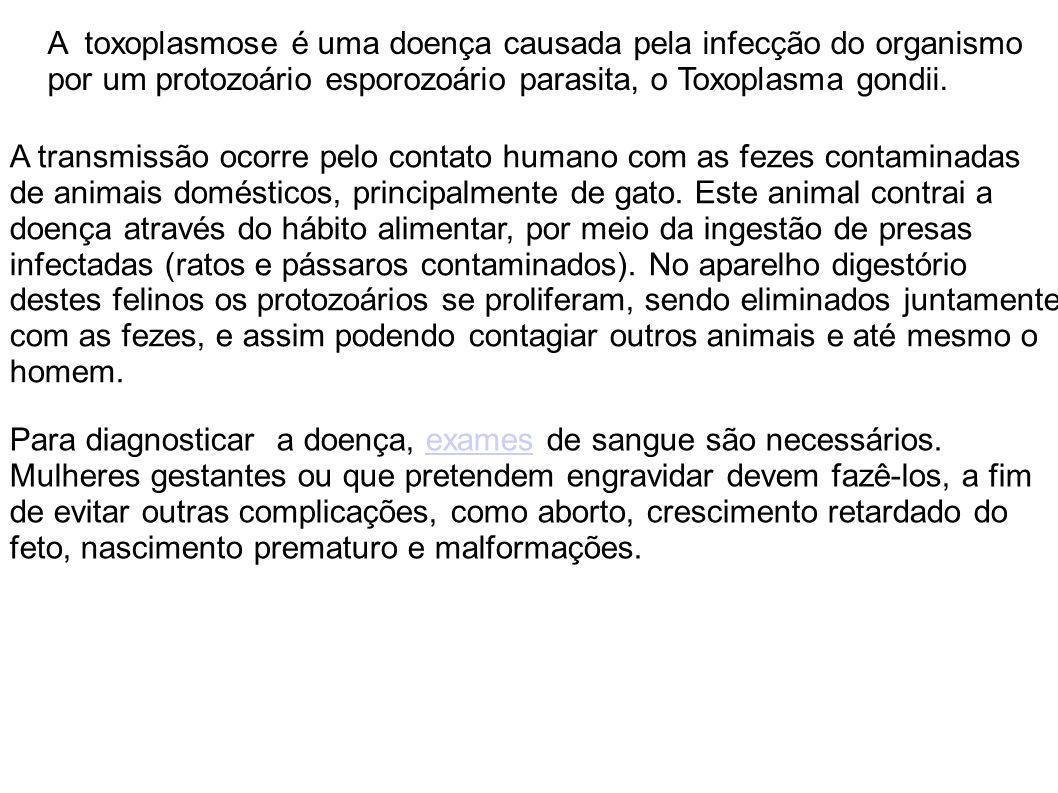 A toxoplasmose é uma doença causada pela infecção do organismo por um protozoário esporozoário parasita, o Toxoplasma gondii.