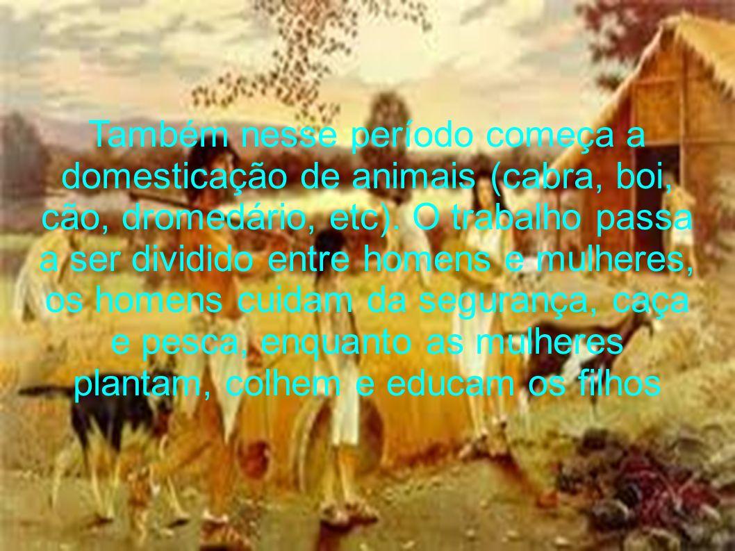 Também nesse período começa a domesticação de animais (cabra, boi, cão, dromedário, etc).