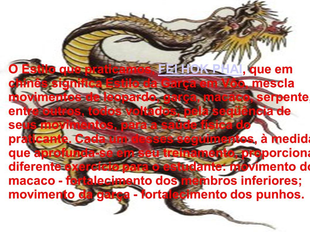 O Estilo que praticamos, FEI HOK PHAI, que em chinês significa Estilo da Garça em Vôo, mescla movimentos de leopardo, garça, macaco, serpente, entre outros, todos voltados, pela seqüência de seus movimentos, para a saúde física do praticante.
