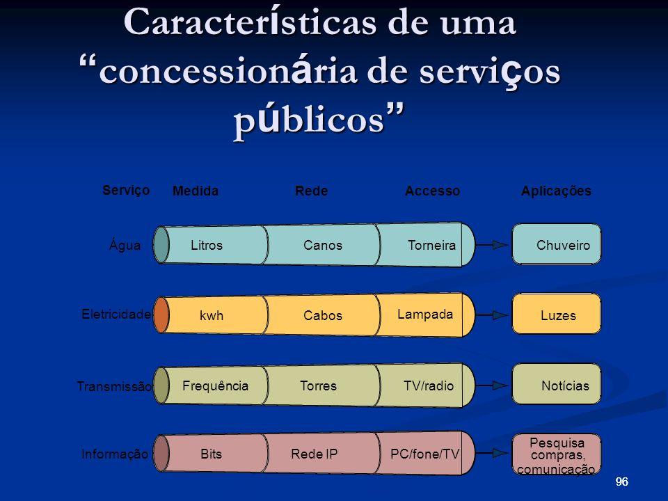 Características de uma concessionária de serviços públicos