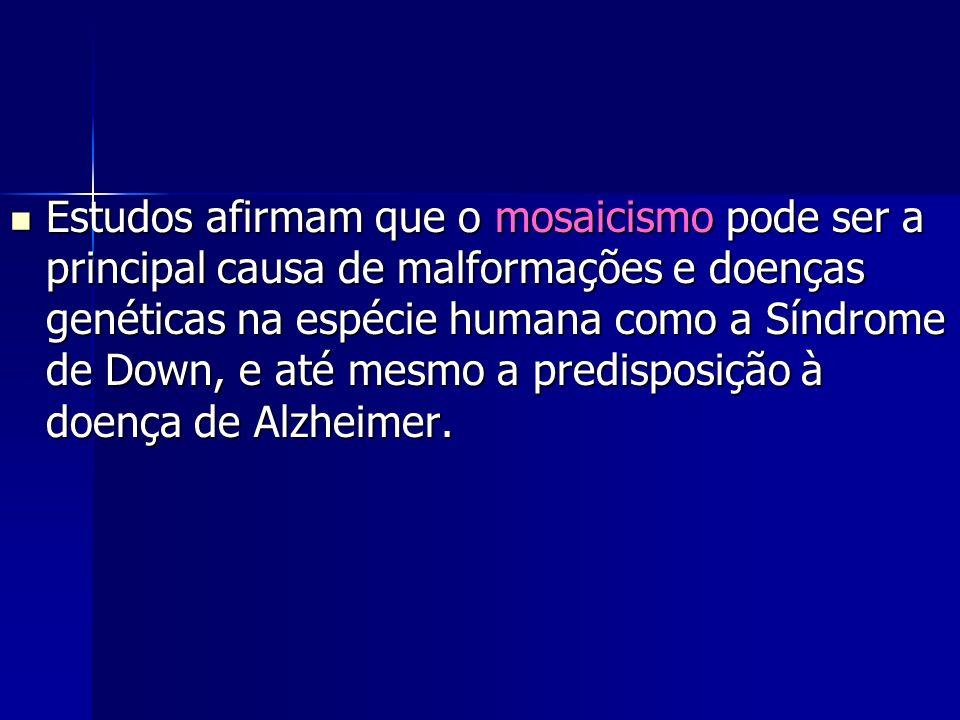 Estudos afirmam que o mosaicismo pode ser a principal causa de malformações e doenças genéticas na espécie humana como a Síndrome de Down, e até mesmo a predisposição à doença de Alzheimer.