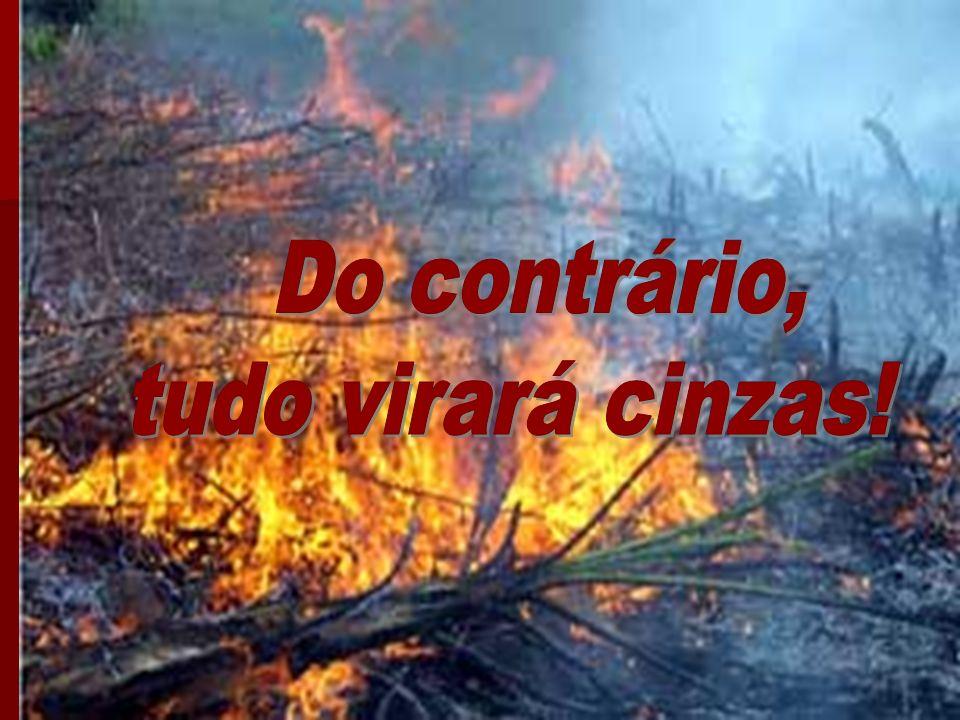 Do contrário, tudo virará cinzas!