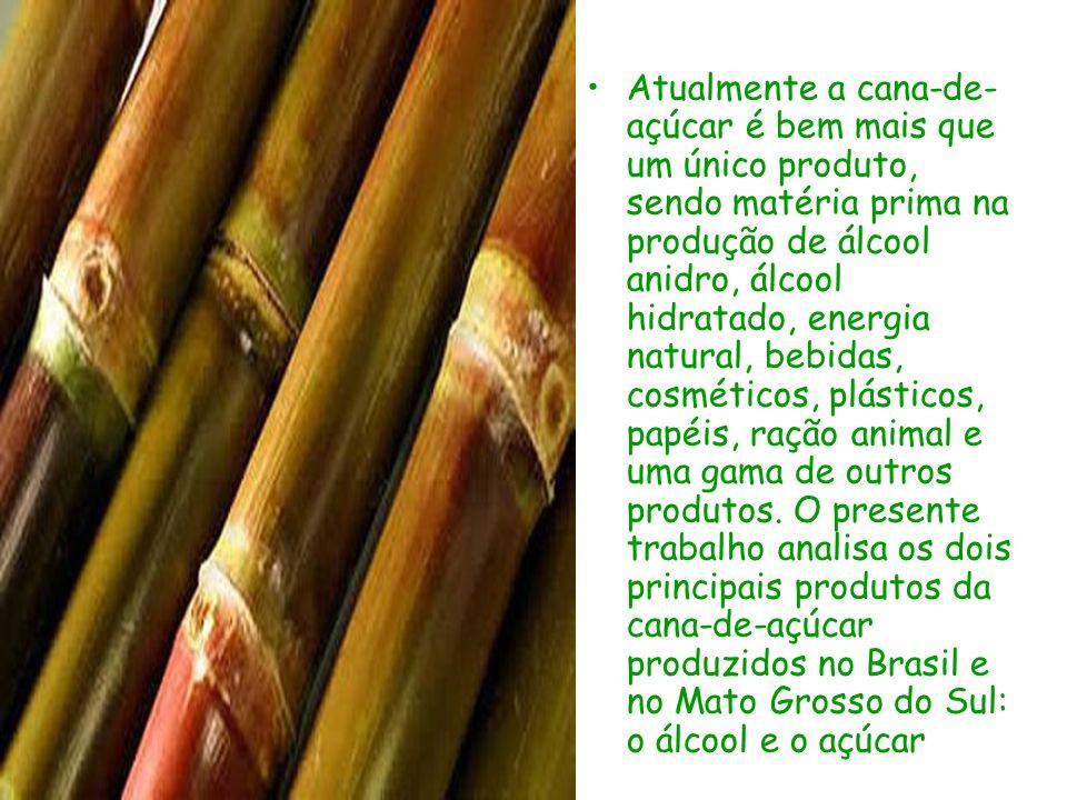 Atualmente a cana-de-açúcar é bem mais que um único produto, sendo matéria prima na produção de álcool anidro, álcool hidratado, energia natural, bebidas, cosméticos, plásticos, papéis, ração animal e uma gama de outros produtos.