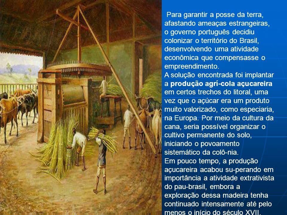 Para garantir a posse da terra, afastando ameaças estrangeiras, o governo português decidiu colonizar o território do Brasil, desenvolvendo uma atividade econômica que compensasse o empreendimento.