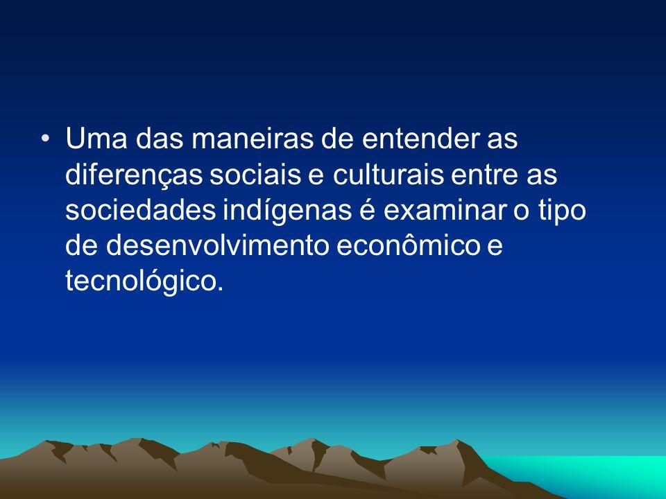 Uma das maneiras de entender as diferenças sociais e culturais entre as sociedades indígenas é examinar o tipo de desenvolvimento econômico e tecnológico.